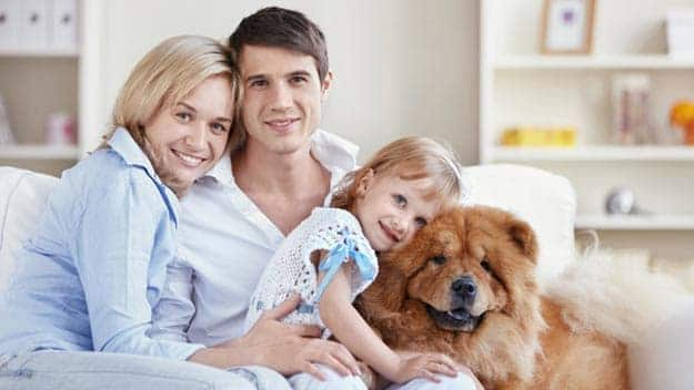 Wills & Trusts dog-young-family Direct Wills Bournemouth